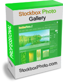 stockbox photo art gallery software